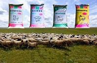 羊必威体育登录注册